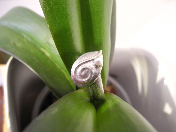 Ring Spirale/SWZperle