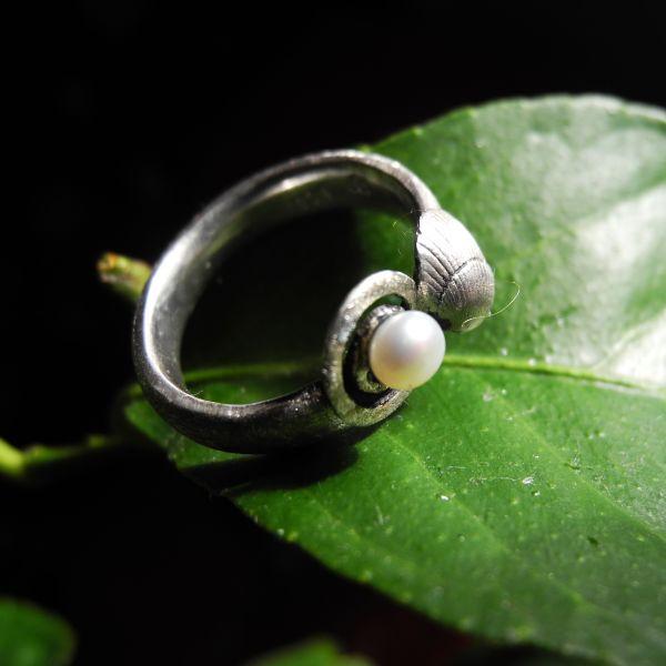 Ring Muschel/Spirale/925% AG/SWZperle
