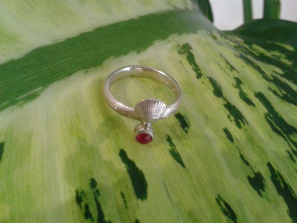 Ring Muschel/925% AG/Rubin